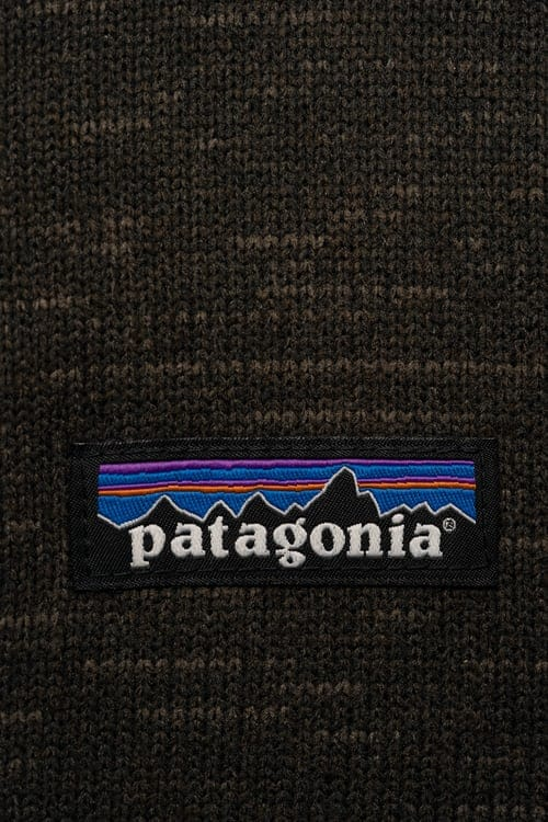 Patagonia Mission and Vision Analysis